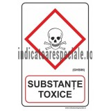 SUBSTANTE TOXICE (GHS06)