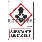 SUBSTANTE MUTAGENE (GHS08)
